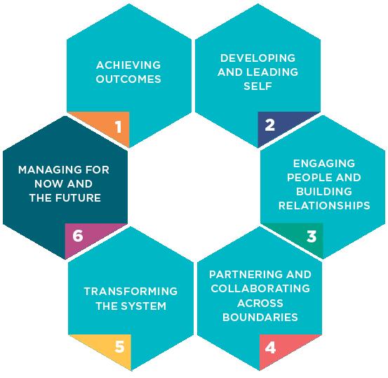 NSW Health Leadership and Management Framework